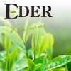 Ambientador EDER Pulv. AE18 TÉ VERDE