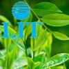 Ecological AIR-FRESHENER LIT 500 ml. Green Tea