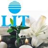Ambientador Ecológico LIT 500 ml. Orquidea Blanca